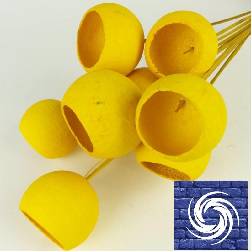 Bell Cup ág - Sárga