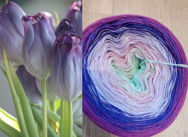 Cold tulip