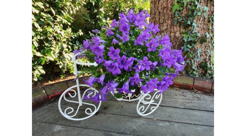 Kovácsoltvas kerek virágtartós fém tricikli 30 cm