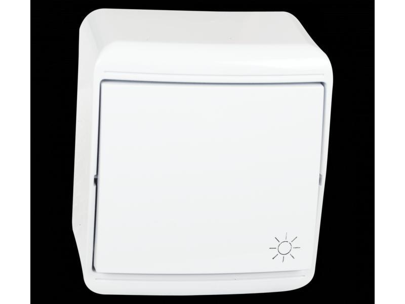 Falon kívüli egy pólusú nyomó101N kapcsoló IP20 Electrix
