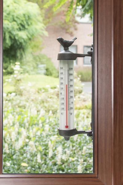 Fali hőmérő madaras