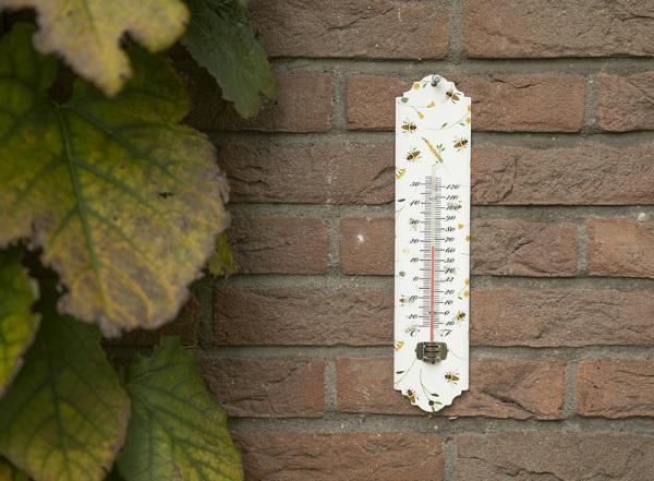 Fém hőmérő méhecskés