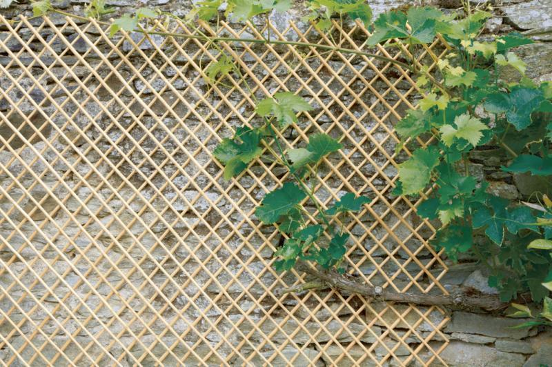 Hántolt vessző Apácarács Natúr 0,5x1,5m Nortene WICK TRELLIS
