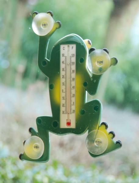 Hőmérő béka forma tapadókorongokkal