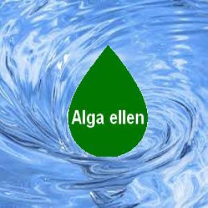 Alga elleni szerek