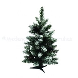 Havas Mini Pine - mini fenyő 60 cm