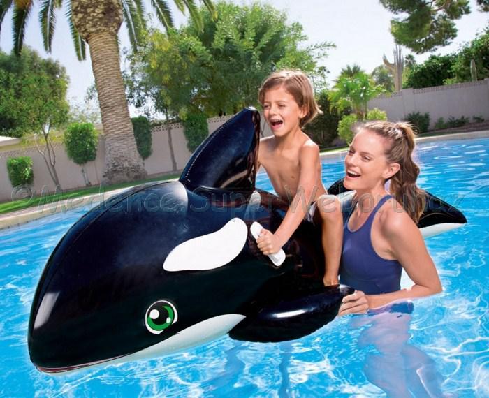 Kardszárnyú delfin rider - vizijáték