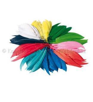 Indián toll 10-15 cm vegyes színek - gazdaságos kiszerelés