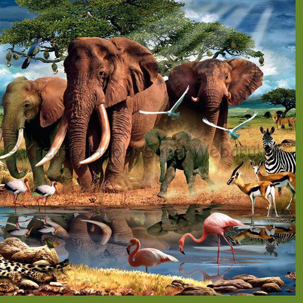 Szalvéta - afrikai állatok a vízparton