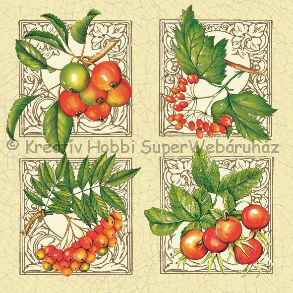 Szalvéta - bogyós termések