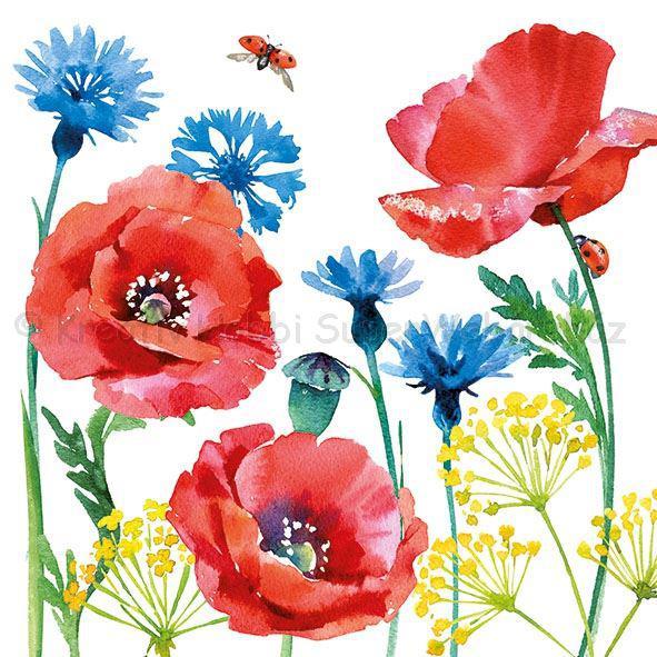 Szalvéta - búzavirág és pipacs - Cornflower and Poppy