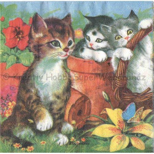 Szalvéta - cicák a kertben