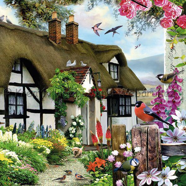 Szalvéta - falusi ház