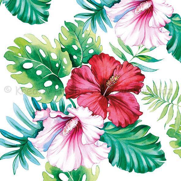 Szalvéta - hibiskus - Hibiscus Floral White