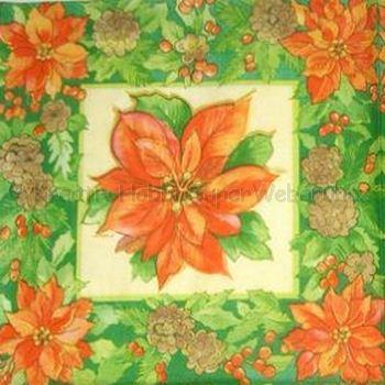 Szalvéta - mikulásvirág 1