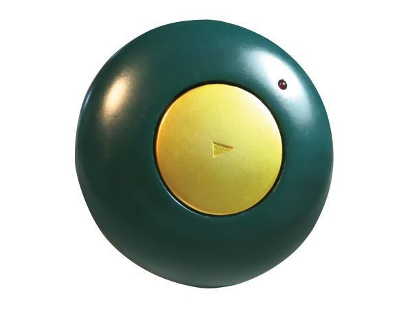 GoTalk Button