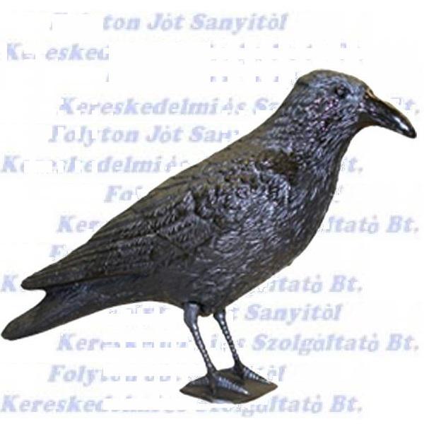 Varjú műanyag, fekete galambriasztó