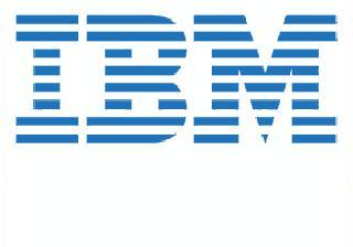 """IBM 600GB 10,000 rpm 6Gb SAS 2.5"""" HDD"""