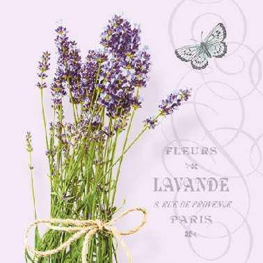 AMBIENTE 12511696 Bunch of Lavender lila papírszalvéta kisebb 25x25cm,20db-os
