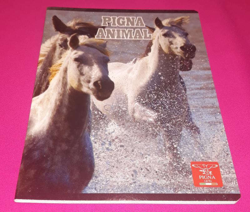 Pigna Animal Horses (lovak) kisalakú négyzetrácsos füzet margóval, 32 lapos