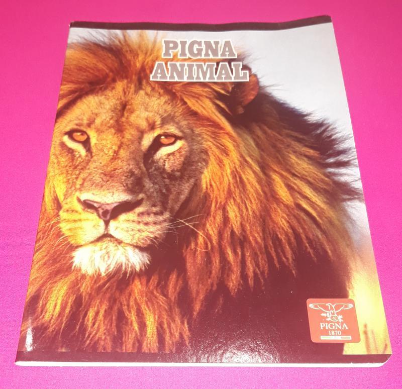 Pigna Animal kisalakú vonalas füzet margóval, 32 lapos (8 mm), Lion (oroszlán)