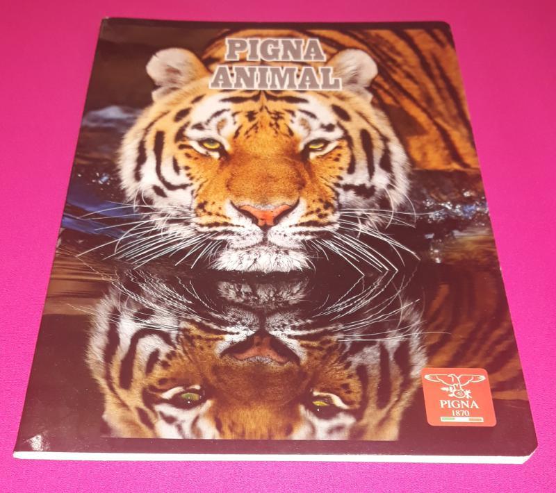 Pigna Animal Tiger (tigris) kisalakú vonalas füzet margóval, 8 mm, 32 lapos
