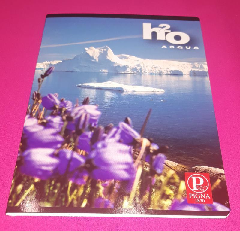 Pigna H2O Acqua kisalakú négyzetrácsos füzet margóval, 32 lapos (virág+jéghegy)