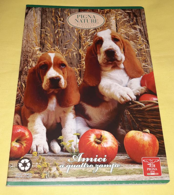 Pigna Nature nagy alakú négyzetrácsos füzet, 40 lapos, basset hound puppies