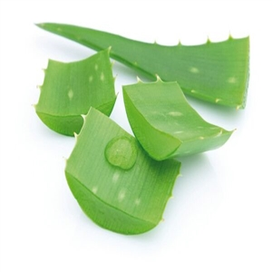 Aloe Ginkgo krémek
