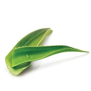 Aloe Ginkgo  maszkok