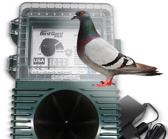 BirdGard Pro - Pigeons (galambok ellen)