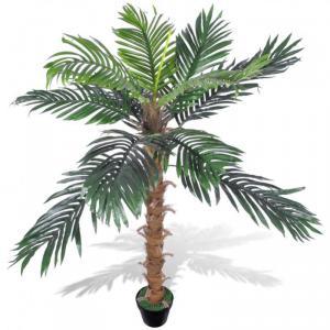 Növény dekoráció