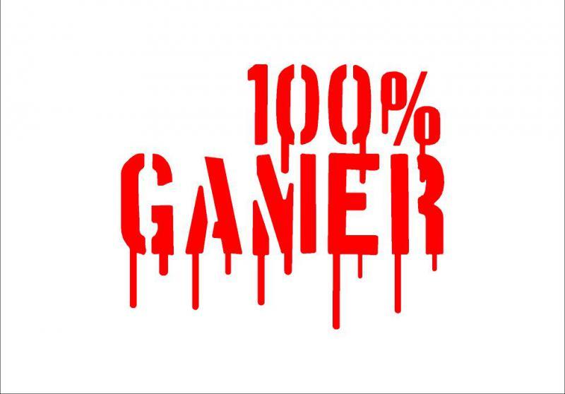 100% Gamer matrica