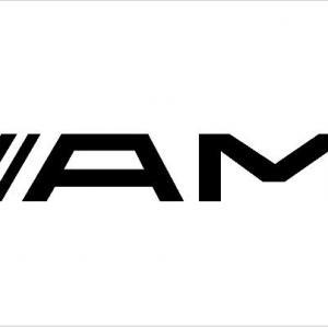 AMG matrica (M2)