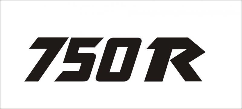 Kawasaki 750R matrica (M1)