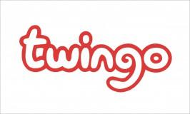 Twingo matrica 165x72mm