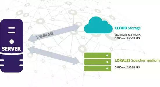Carbonite Hybrid szerver Backup védelem 500 GB felhő tárolással