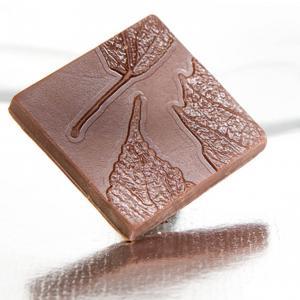 bécsi karamelles tejcsokoládé kocka