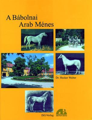 A Bábolnai Arab Ménes