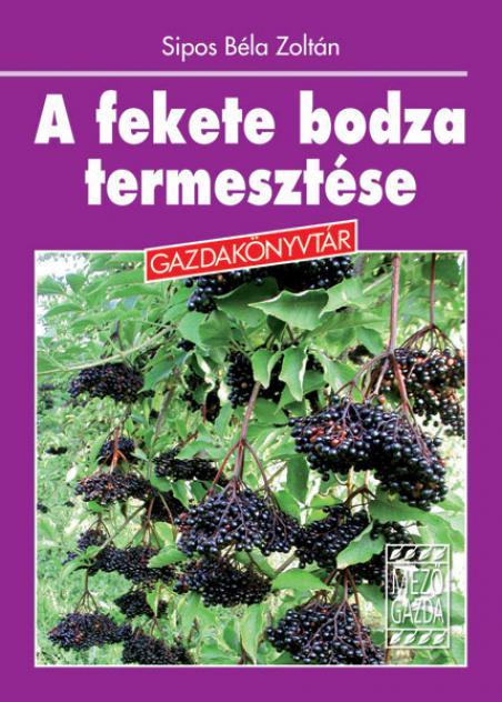 A fekete bodza termesztése