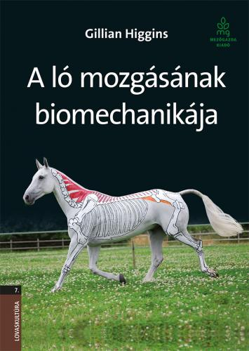 A ló mozgásának biomechanikája