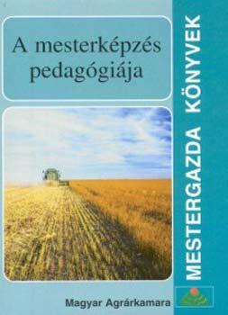 A mesterképzés pedagógiája