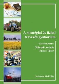 A stratégiai és üzleti tervezés gyakorlata