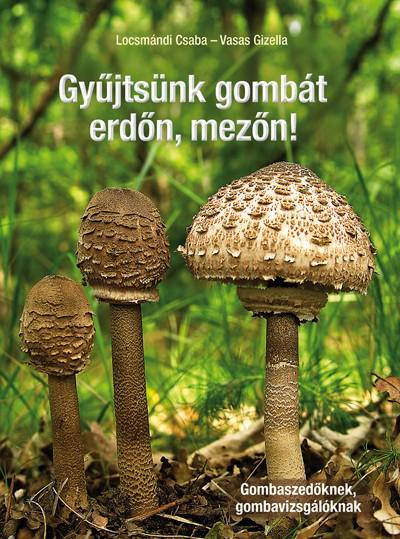 Gyűjtsünk gombát erdőn, mezőn!