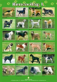 Kutyavilág 1 - poszter