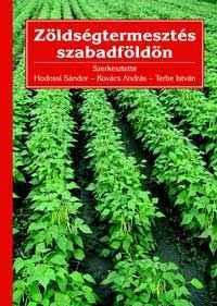 Zöldségtermesztés szabadföldön