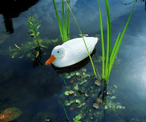 Fehér kacsa, 38,5 cm