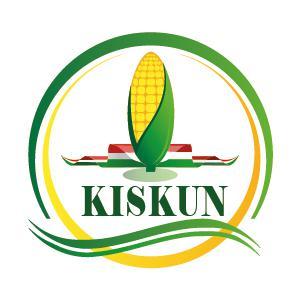 Középérésű kukorica vetőmagok
