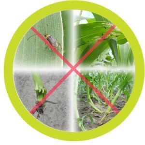 termésbiztonság és talajkondicionálás