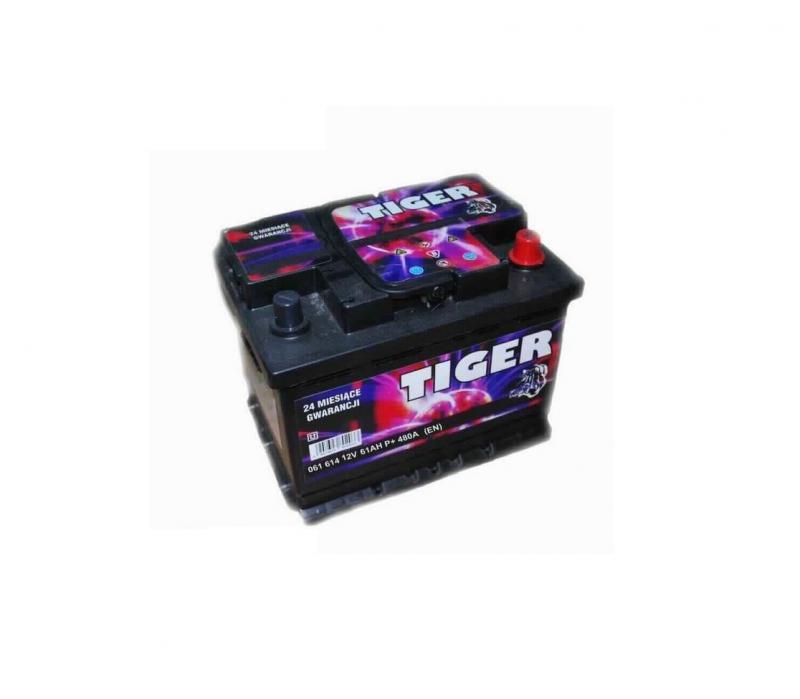 Akkumulátor TIGER 61AH jobb+ 510A